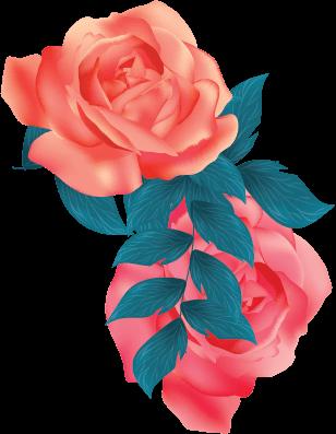 L'histoire des chemins de la rose