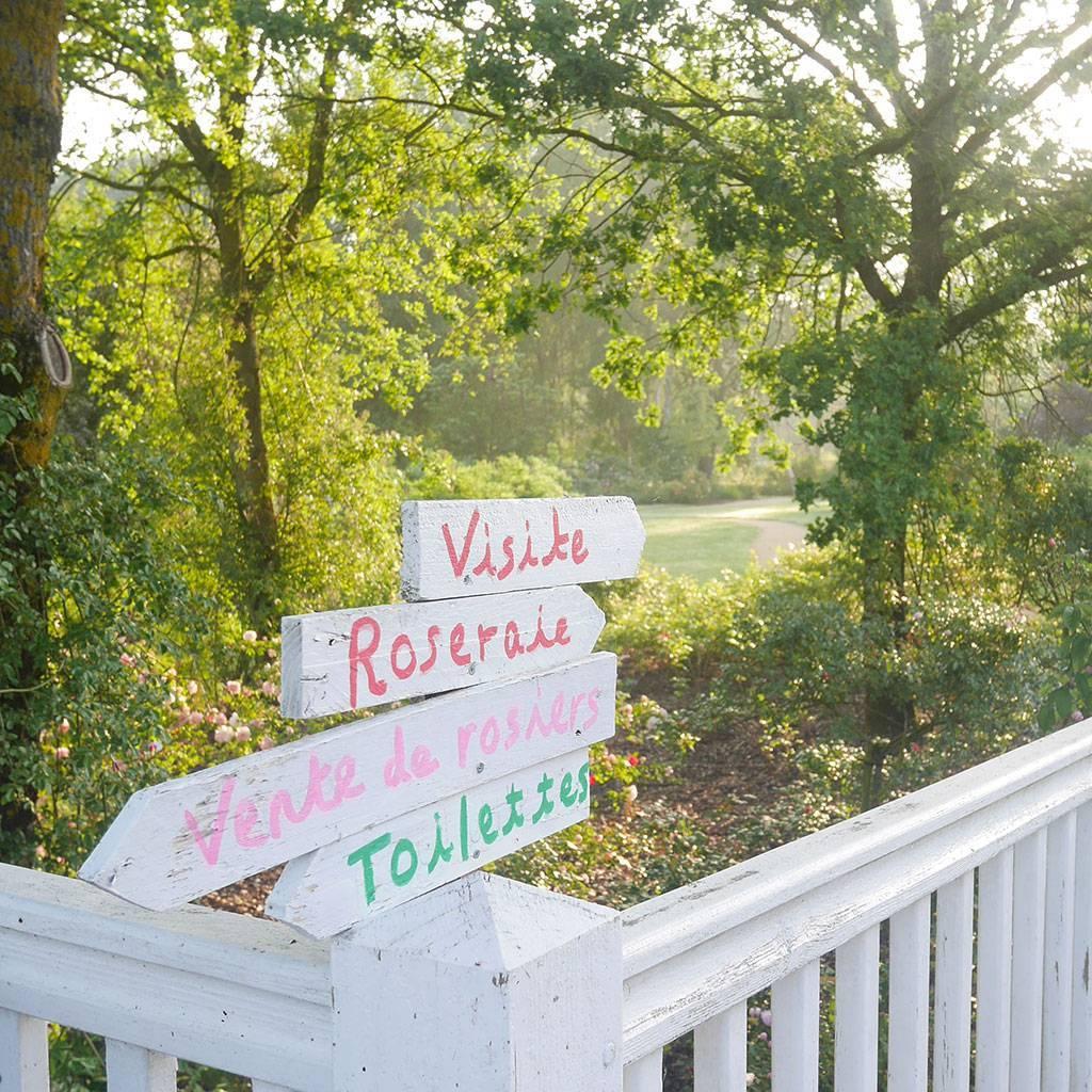 Venez visiter la roseraie de Doué-la-Fontaine en famille
