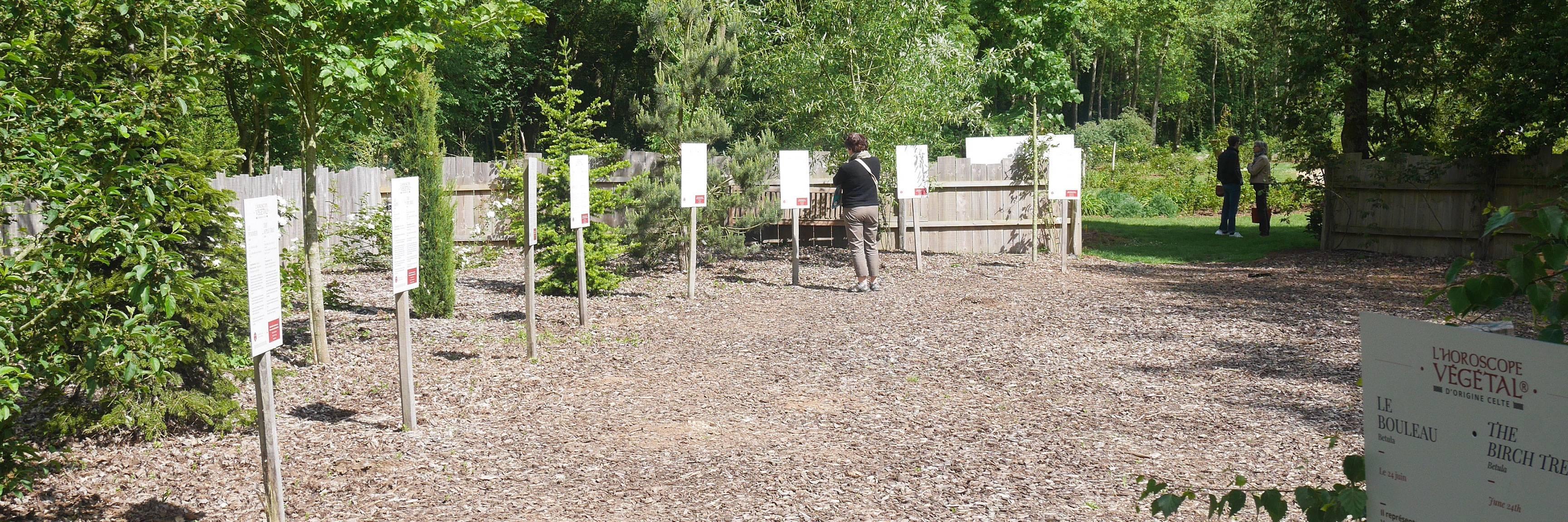 Découvrez l'horoscope végétal de la roseraie à Doué-la-Fontaine