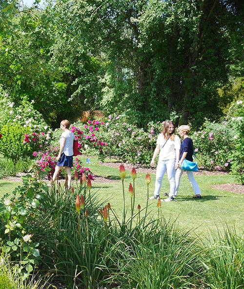 Visiter les chemins de la rose de Doué-la-Fontaine