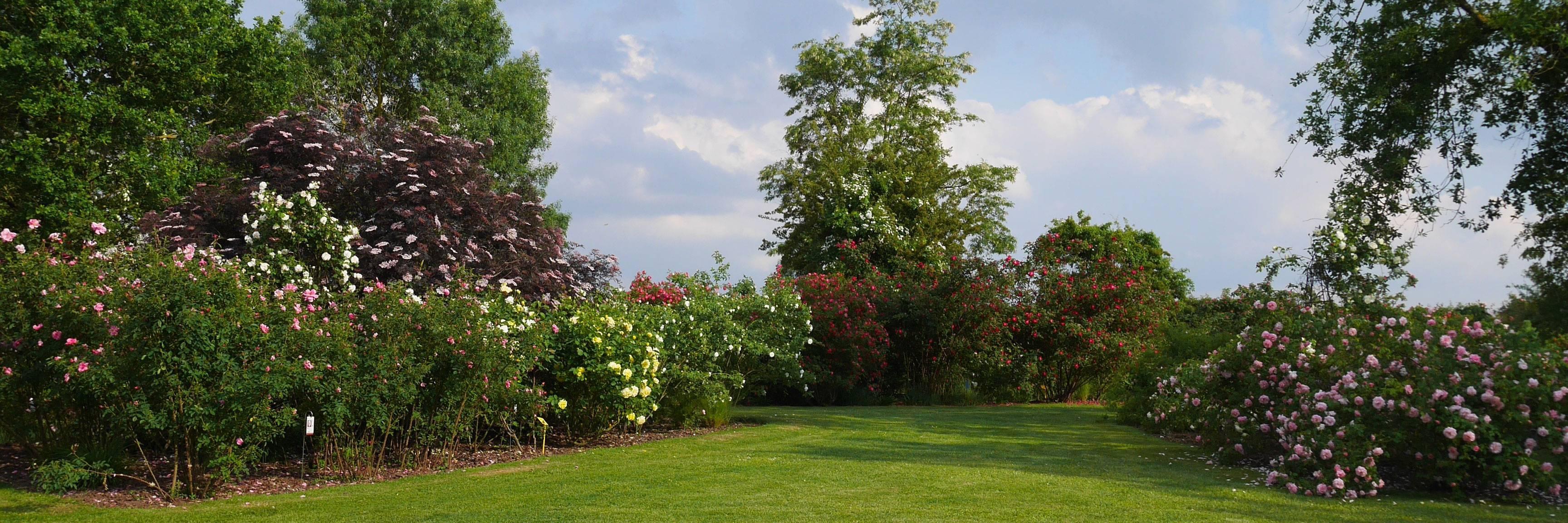 Visite en famille du jardin des roses de Doué-la-Fontaine